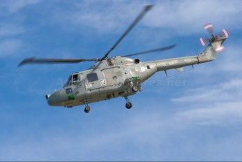 ZD254 - Royal Navy Westland Lynx HAS.3