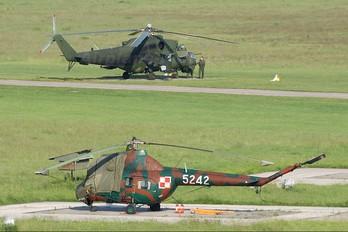 5242 - Poland - Army Mil Mi-2