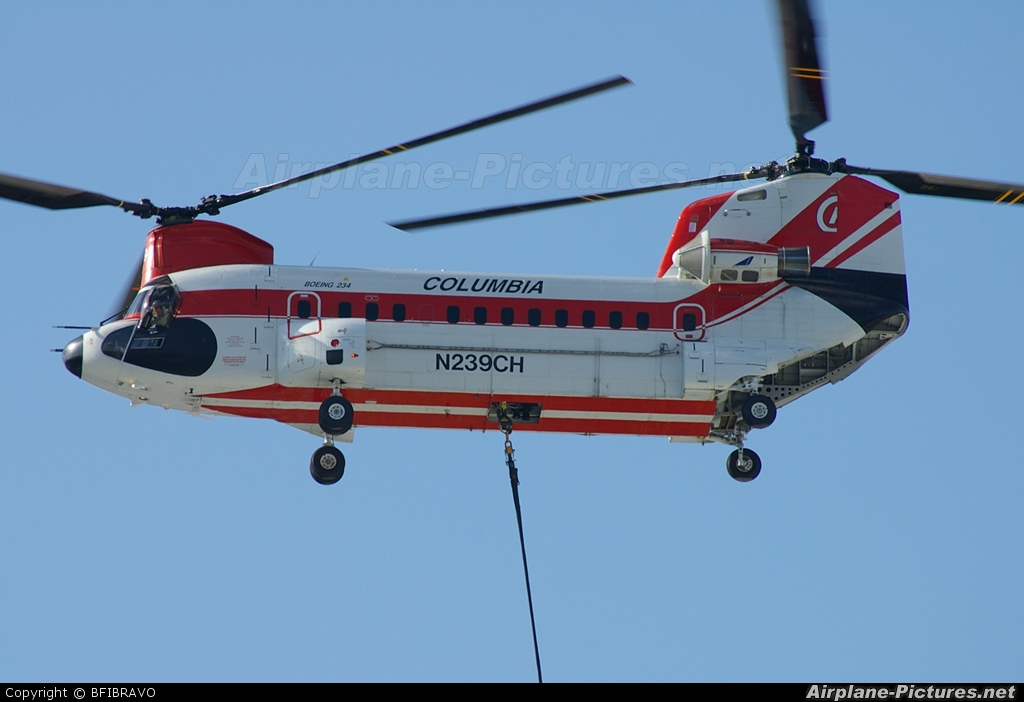 Columbia Helicopters N239CH aircraft at Seattle - Boeing Field / King County Int