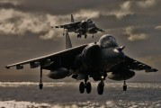 ZD346 - Royal Air Force British Aerospace Harrier GR.7 aircraft