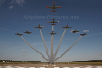 "020 - Poland - Air Force ""Orlik Acrobatic Group"" PZL 130 Orlik TC-1 / 2"