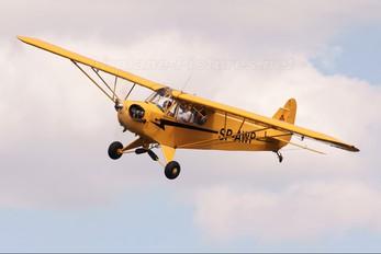 SP-AWP - Private Piper J3 Cub