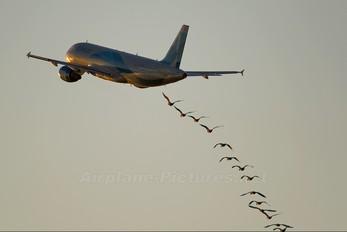 EC-HTD - Clickair Airbus A320