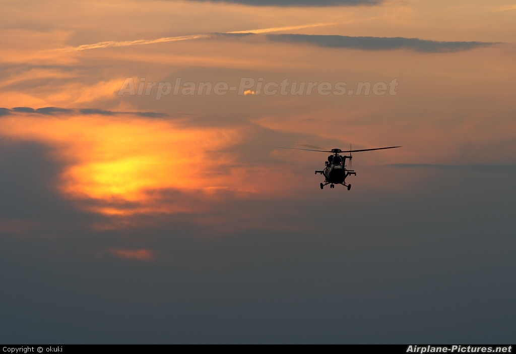 Poland - Army - aircraft at In Flight - Poland