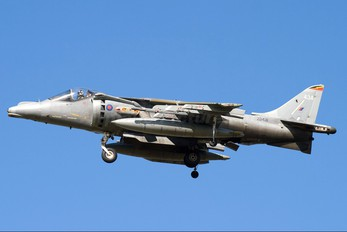 ZD431 - Royal Air Force British Aerospace Harrier GR.7