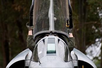 - - Argentina - Air Force Dassault Mirage V