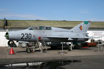 230 - Germany - Democratic Republic Air Force Mikoyan-Gurevich MiG-21US