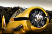 D-FRCP - Private North American Harvard/Texan (AT-6, 16, SNJ series) aircraft