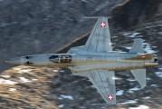 J-3036 - Switzerland - Air Force Northrop F-5E Tiger II aircraft