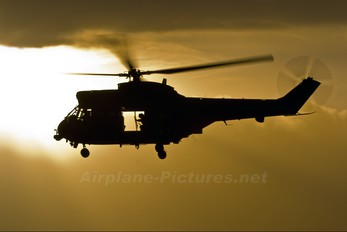 XW213 - Royal Air Force Westland Puma HC.1