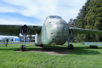 ZK-EPC - New Zealand - Air Force Bristol 170 Freighter