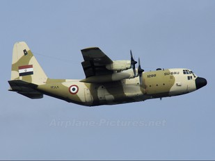 1288 - Egypt - Air Force Lockheed C-130H Hercules