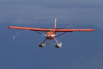 N2899J - Rusts Flying Services de Havilland Canada DHC-3 Otter