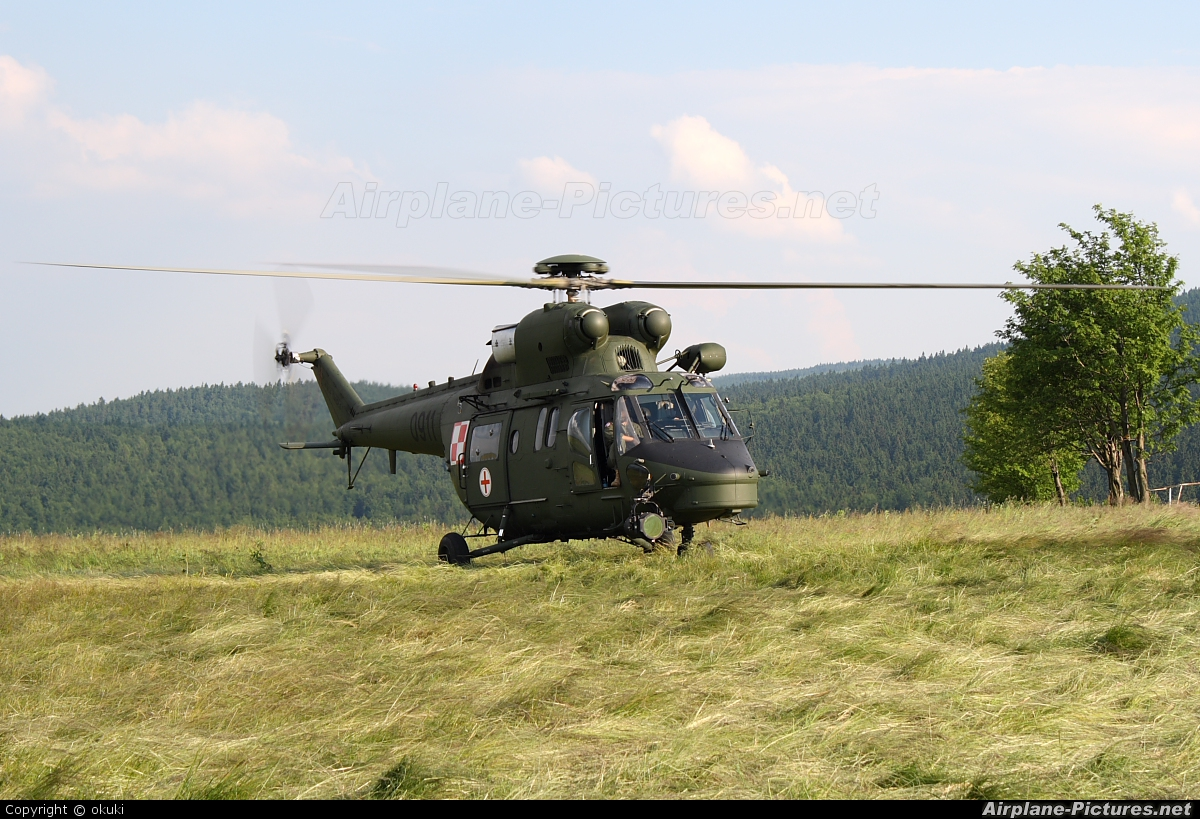 Poland - Army 0911 aircraft at Zieleniec