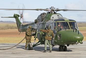 ZG921 - British Army Westland Lynx AH.9