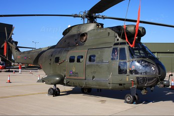 ZA936 - Royal Air Force Westland Puma HC.1