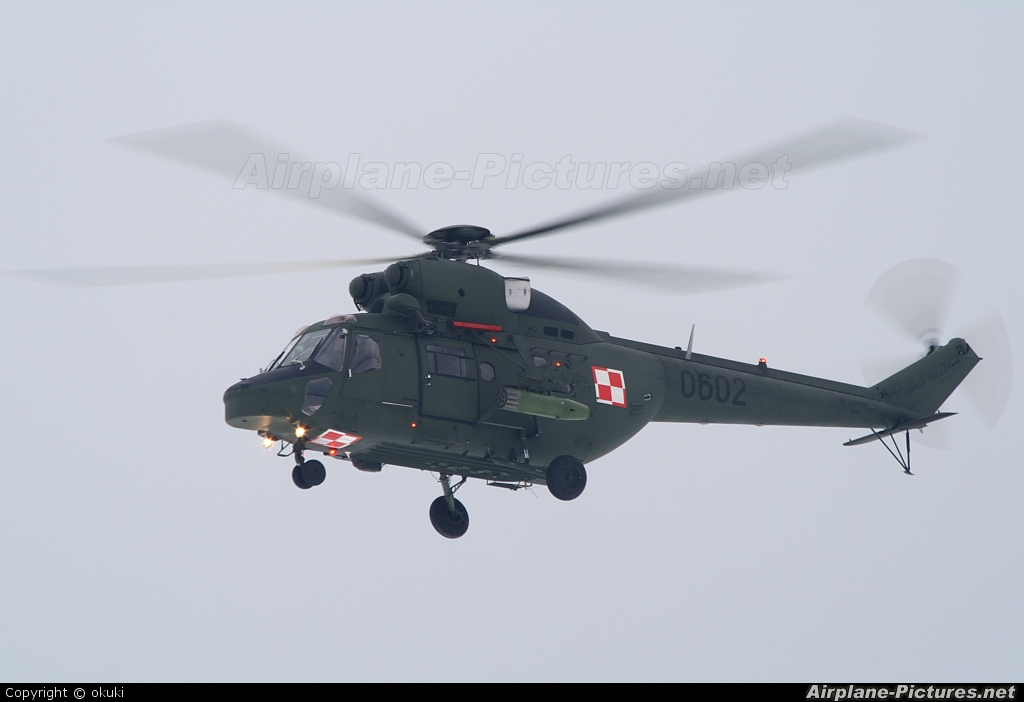 Poland - Army 0602 aircraft at In Flight - Poland