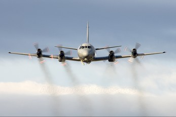 NZ4205 - New Zealand - Air Force Lockheed P-3K Orion