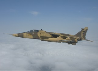 - - Oman - Air Force Sepecat Jaguar A