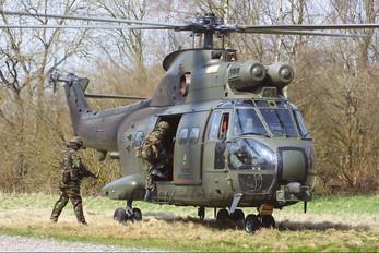 ZJ954 - Royal Air Force Westland Puma HC.1