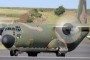 16801 - Portugal - Air Force Lockheed C-130H Hercules aircraft