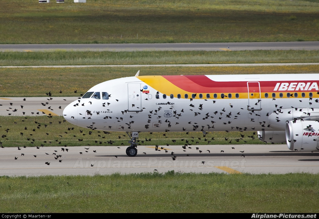 Iberia EC-JDM aircraft at Madrid - Barajas