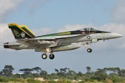 166650 - USA - Navy McDonnell Douglas F/A-18E Super Hornet aircraft