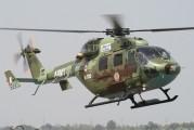 IA-1136 - India - Army Hindustan Dhruv aircraft