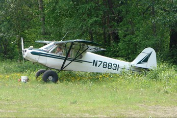 N78831 - Private Piper PA-11 Cub