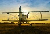 LV-X309 - Private Acro Sport Acro Sport II aircraft