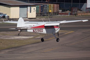 N2295D - Private Cessna 170