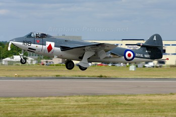 "WV908 - Royal Navy ""Historic Flight"" Hawker Sea Hawk FGA.6"