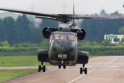 84+33 - Germany - Army Sikorsky CH-53G Sea Stallion aircraft