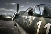 D-FMFW - Private Flug Werk Fw 190-A8/N aircraft