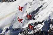 J-3087 - Switzerland - Air Force:  Patrouille de Suisse Northrop F-5E Tiger II aircraft