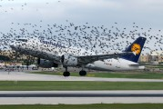 D-AILP - Lufthansa Airbus A319 aircraft