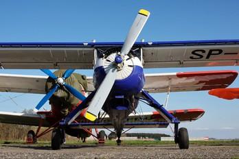 SP-CSE - Aeroklub Gdański PZL 104 Wilga 35A