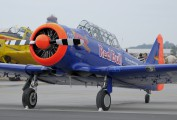 D-FHGL - The Flying Bulls North American Harvard/Texan (AT-6, 16, SNJ series) aircraft