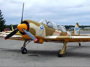 YR-UAA - Aerobatic Yakkers Yakovlev Yak-52TW