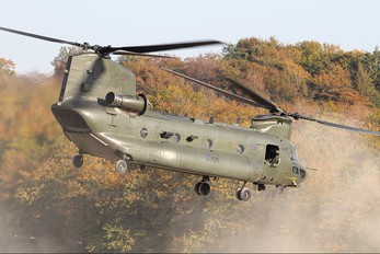 ZH902 - Royal Air Force Boeing Chinook HC.3