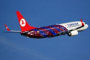 TC-JGY - Turkish Airlines Boeing 737-800 aircraft