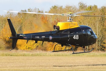 ZJ248 - British Army Aerospatiale AS350 Squirrel HT.1 & 2