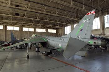 ZD436 - Royal Air Force British Aerospace Harrier GR.7