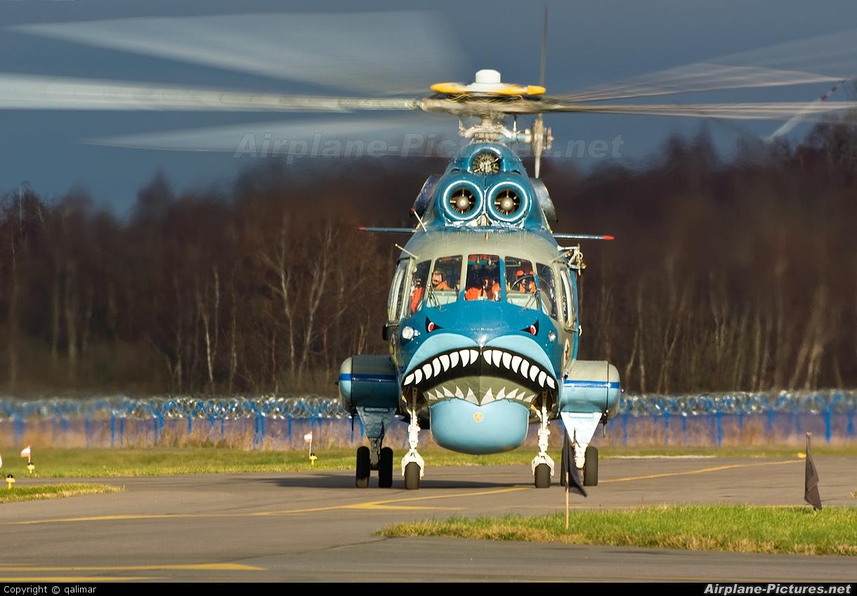 Poland - Navy 1005 aircraft at Undisclosed location