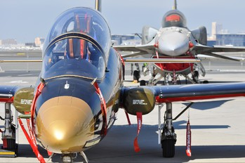 "- - United Arab Emirates - Air Force ""Al Fursan"" Aermacchi MB-339A"