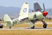 N260X - Private Hawker Sea Fury FB.11 aircraft