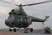 6924 - Poland - Army Mil Mi-2 aircraft