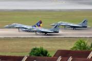 M43-04 - Malaysia - Air Force Mikoyan-Gurevich MiG-29N aircraft
