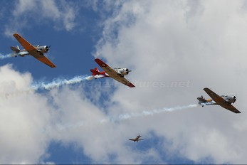 VH-XSA - Southern Knights Aerobatic Team North American Harvard/Texan (AT-6, 16, SNJ series)