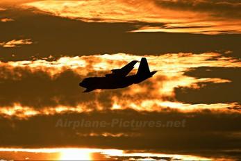 - - Royal Air Force Lockheed Hercules C.4